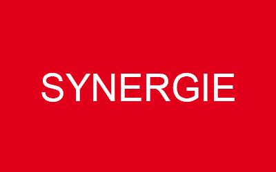 L'action Synergie fait son entrée dans le portefeuille «Défensif» du Figaro Bourse