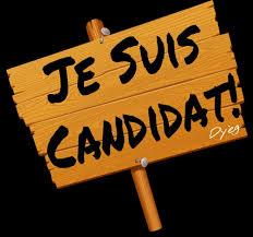 Appel à candidatures FO élections professionnelles SYNERGIE
